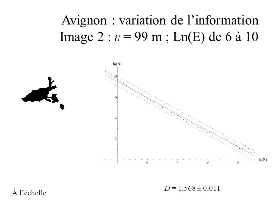 Avignon : variation de linformation Image 2 : ε = 99 m ; Ln(E) de 6 à 10 D = 1,568 ± 0,011 À léchelle