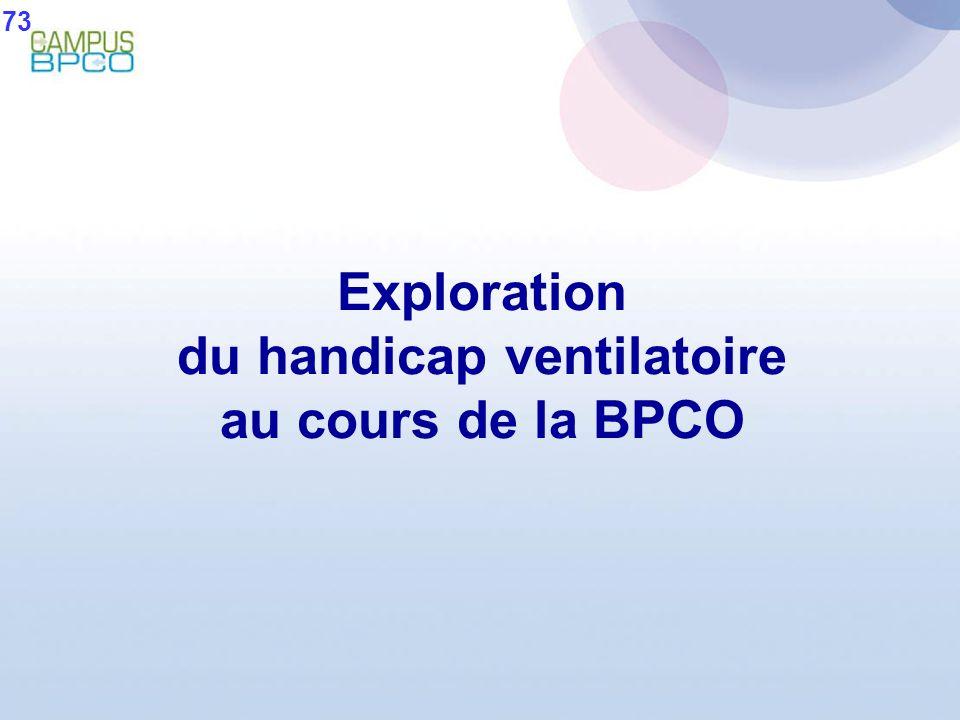 Exploration du handicap ventilatoire au cours de la BPCO 73
