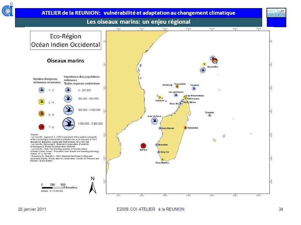 ATELIER de la REUNION: vulnérabilité et adaptation au changement climatique 26 janvier 2011E2008 COI ATELIER à la REUNION34 Les oiseaux marins: un enj