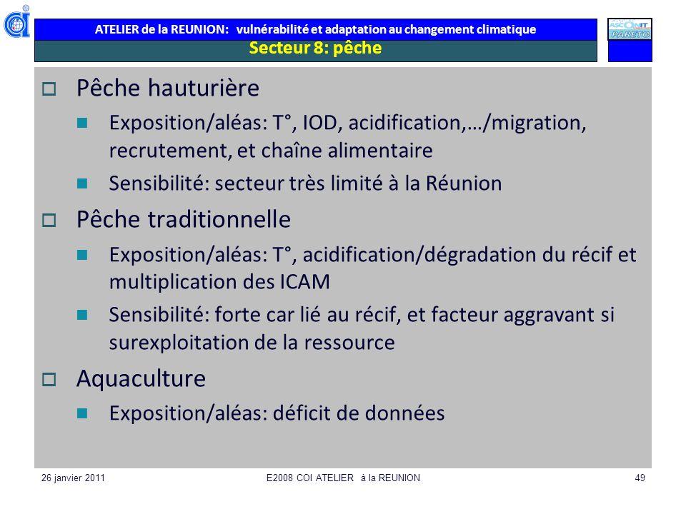 ATELIER de la REUNION: vulnérabilité et adaptation au changement climatique 26 janvier 2011E2008 COI ATELIER à la REUNION49 Secteur 8: pêche Pêche hau