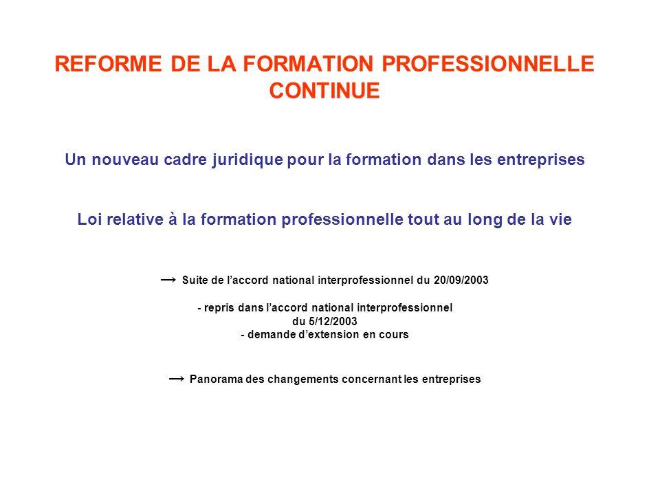 REFORME DE LA FORMATION PROFESSIONNELLE CONTINUE Un nouveau cadre juridique pour la formation dans les entreprises Loi relative à la formation profess