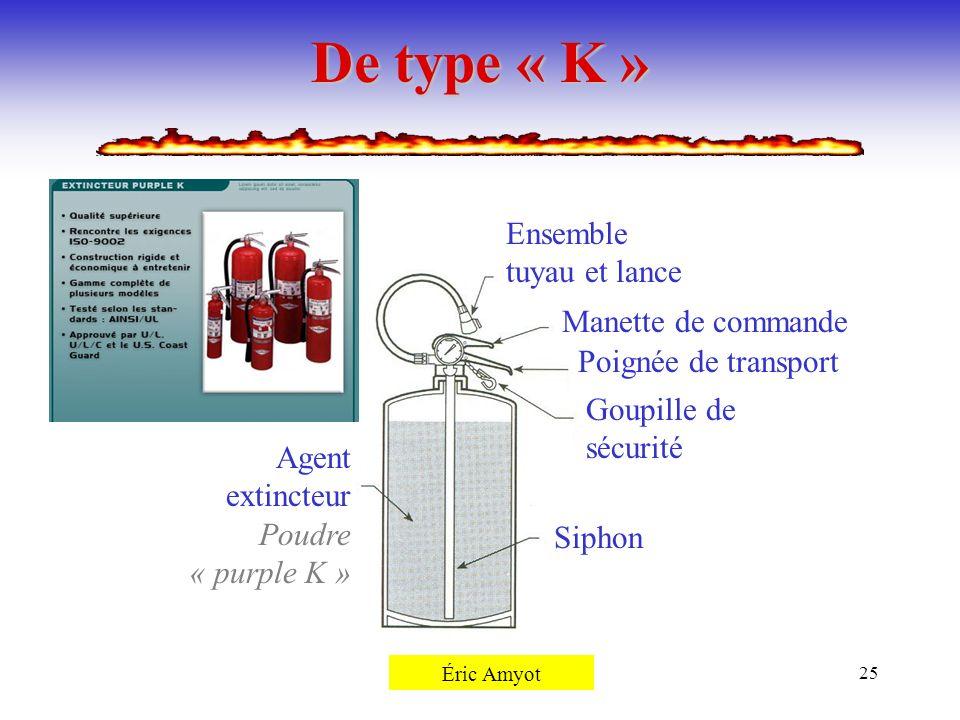 Pierre Rémillard25 De type « K » Siphon Agent extincteur Poudre « purple K » Goupille de sécurité Poignée de transport Manette de commande Ensemble tu