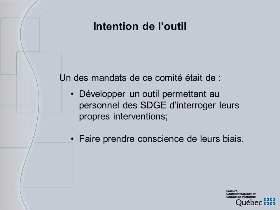 Intention de loutil Développer un outil permettant au personnel des SDGE dinterroger leurs propres interventions; Faire prendre conscience de leurs bi
