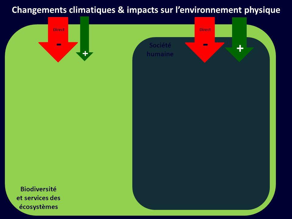 Société humaine + Direct - Changements climatiques & impacts sur lenvironnement physique + Direct - Biodiversité et services des écosystèmes + -
