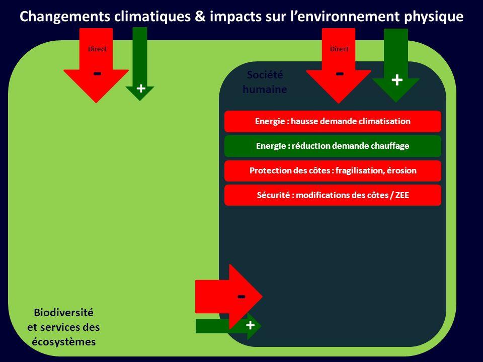 Société humaine + Direct - Changements climatiques & impacts sur lenvironnement physique + Direct - Biodiversité et services des écosystèmes Fragilisation récifs coralliens Extinction despèces, fragilisation habitats Augmentation despèces invasives + -