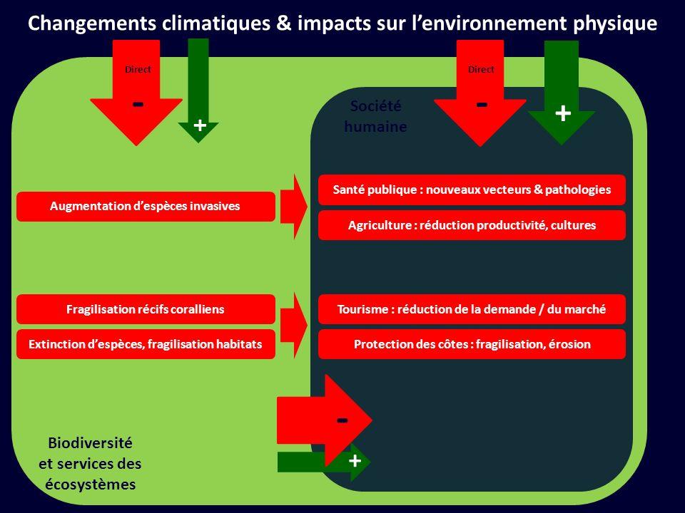 Société humaine + Direct - + Direct - Biodiversité et services des écosystèmes Changements climatiques & impacts sur lenvironnement physique Atténuation Eviter lingérable = réduire les émissions Adaptation Gérer linévitable = réduire les impacts + -