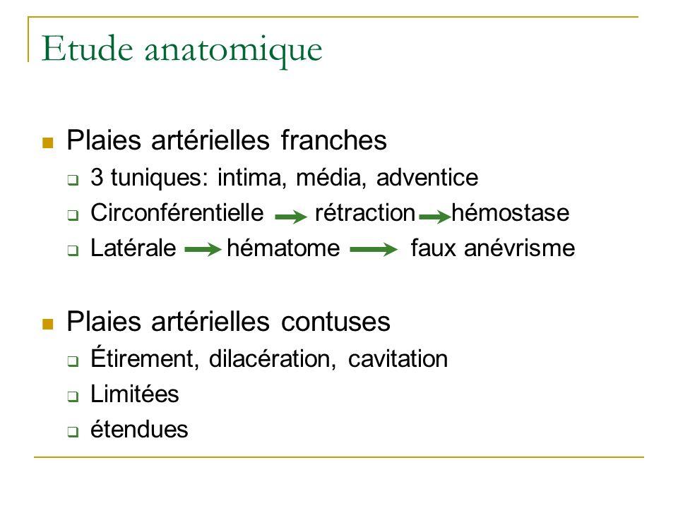 Etude anatomique Plaies artérielles franches 3 tuniques: intima, média, adventice Circonférentielle rétraction hémostase Latérale hématome faux anévri