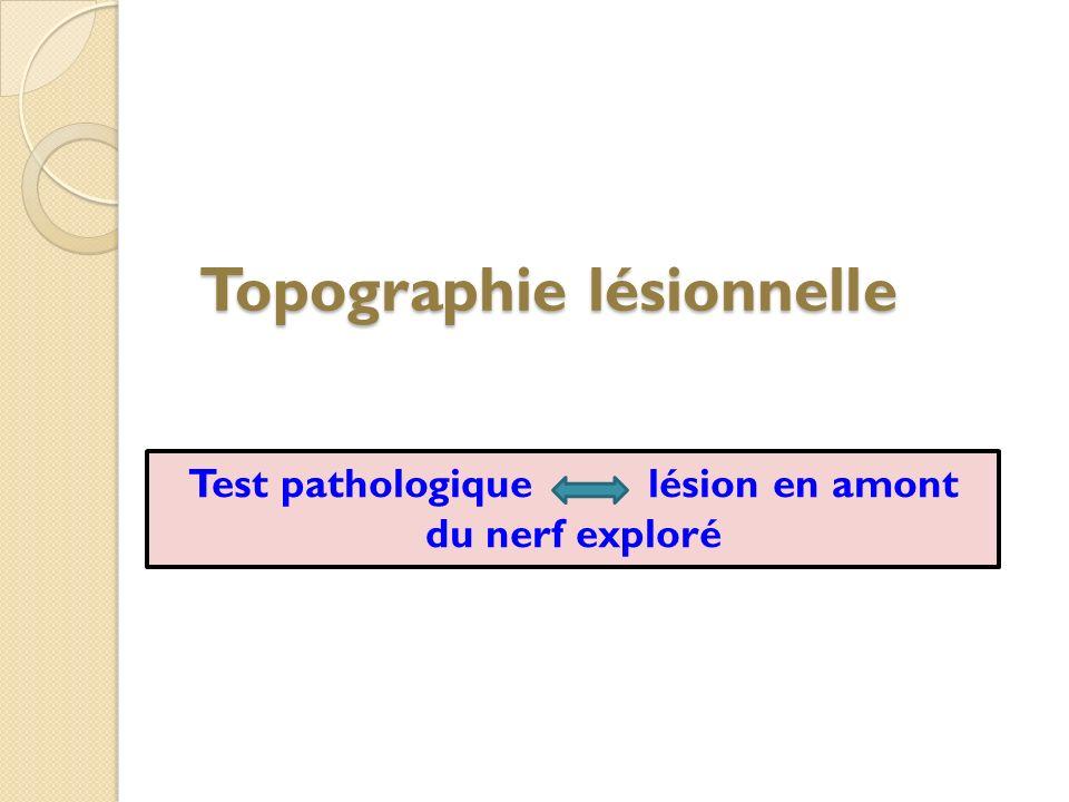 Topographie lésionnelle Test pathologique lésion en amont du nerf exploré