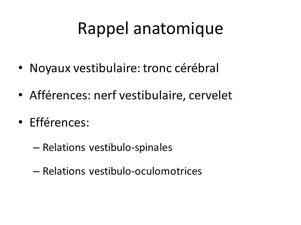Rappel anatomique Noyaux vestibulaire: tronc cérébral Afférences: nerf vestibulaire, cervelet Efférences: – Relations vestibulo-spinales – Relations v
