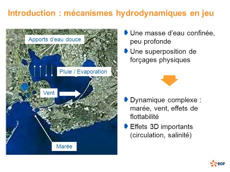 Introduction : mécanismes hydrodynamiques en jeu Une masse deau confinée, peu profonde Une superposition de forçages physiques Apports deau douce Maré