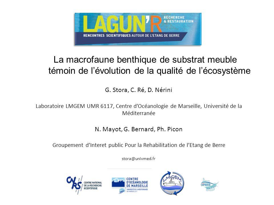 G. Stora, C. Ré, D. Nérini Laboratoire LMGEM UMR 6117, Centre dOcéanologie de Marseille, Université de la Méditerranée N. Mayot, G. Bernard, Ph. Picon