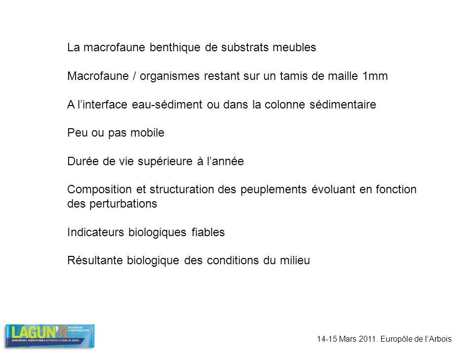 14-15 Mars 2011. Europôle de lArbois La macrofaune benthique de substrats meubles Macrofaune / organismes restant sur un tamis de maille 1mm A linterf