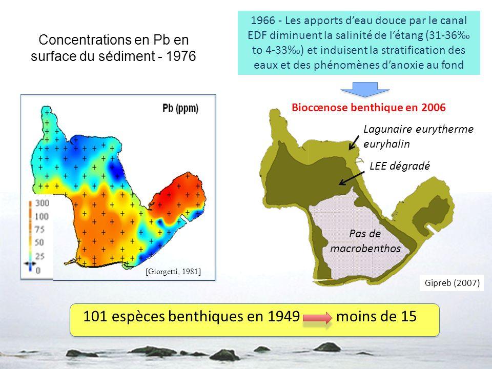 Concentrations en Pb en surface du sédiment - 1976 [Giorgetti, 1981] Lagunaire eurytherme euryhalin LEE dégradé Pas de macrobenthos Biocœnose benthiqu