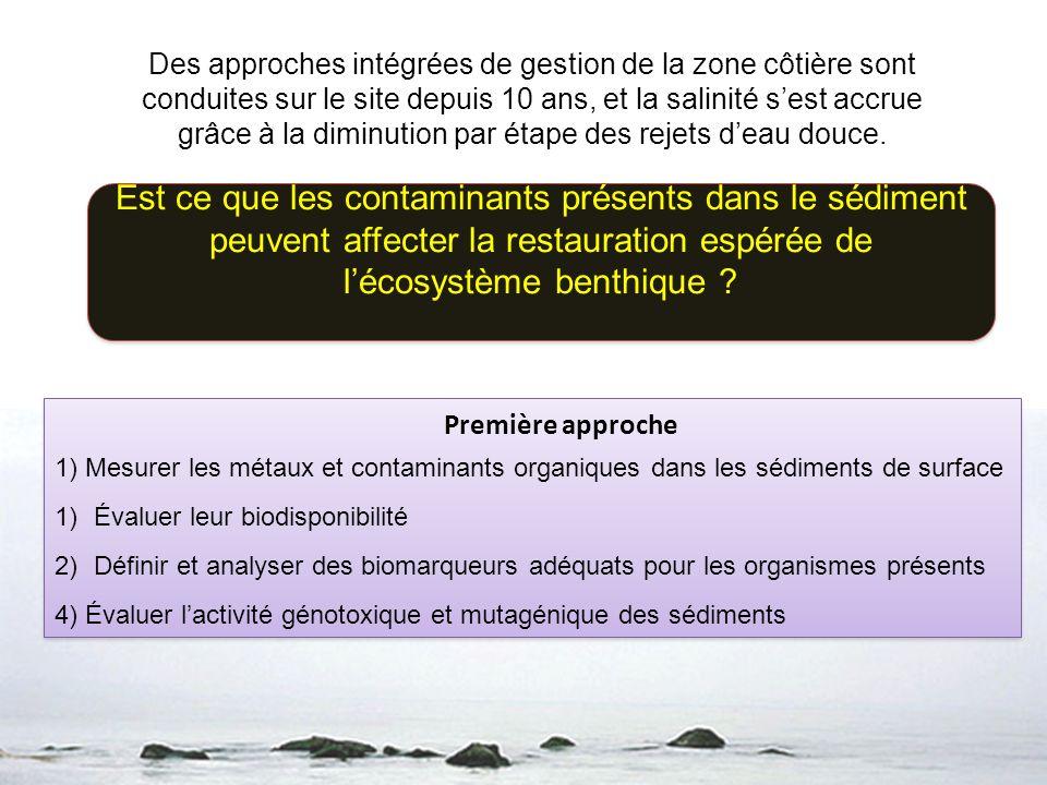 Des approches intégrées de gestion de la zone côtière sont conduites sur le site depuis 10 ans, et la salinité sest accrue grâce à la diminution par é