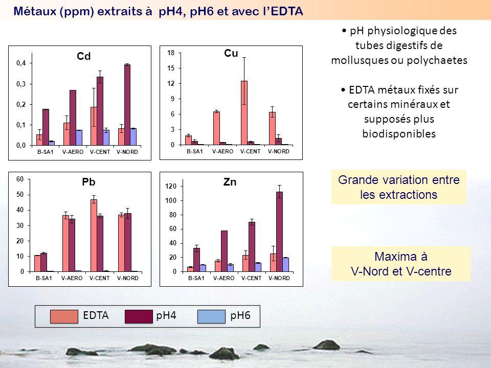 EDTA pH4 pH6 Métaux (ppm) extraits à pH4, pH6 et avec lEDTA Maxima à V-Nord et V-centre Grande variation entre les extractions pH physiologique des tu