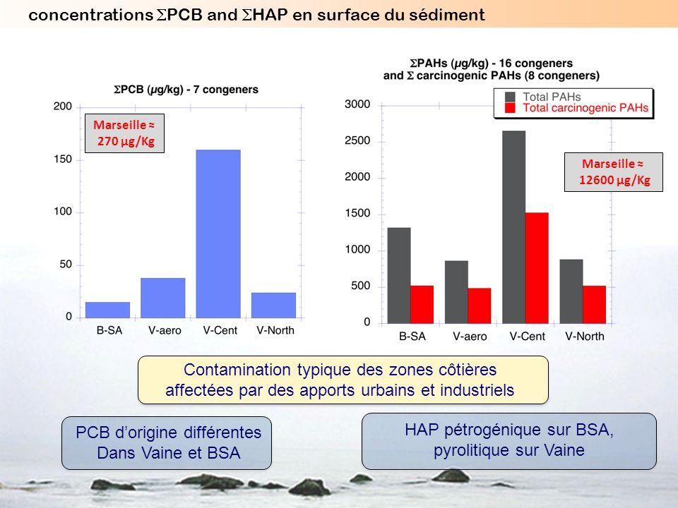 PCB dorigine différentes Dans Vaine et BSA HAP pétrogénique sur BSA, pyrolitique sur Vaine Contamination typique des zones côtières affectées par des