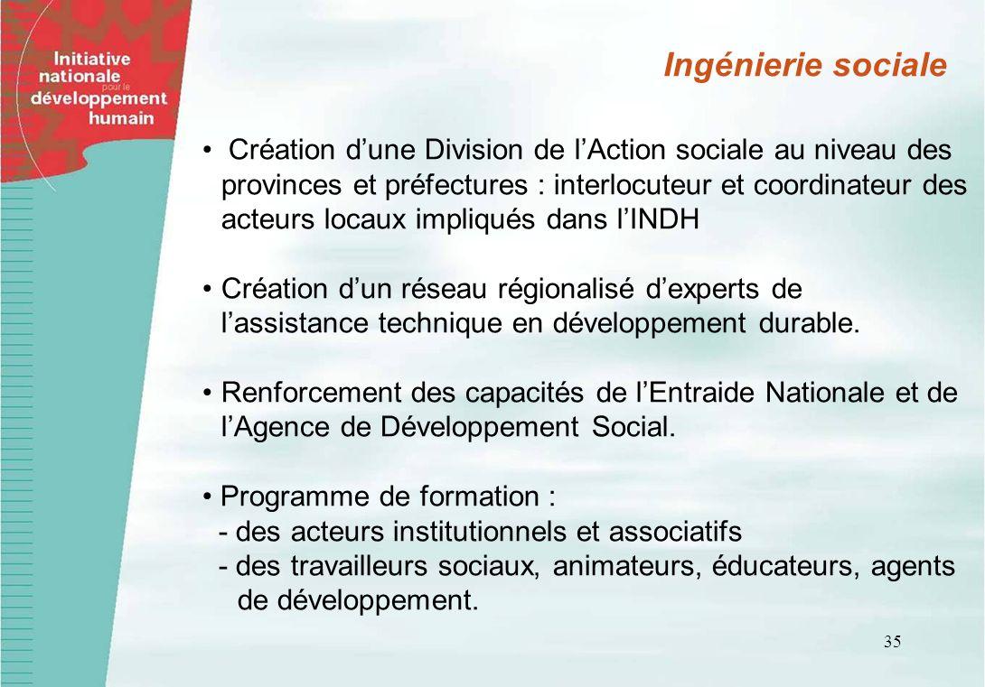 35 Création dune Division de lAction sociale au niveau des provinces et préfectures : interlocuteur et coordinateur des acteurs locaux impliqués dans