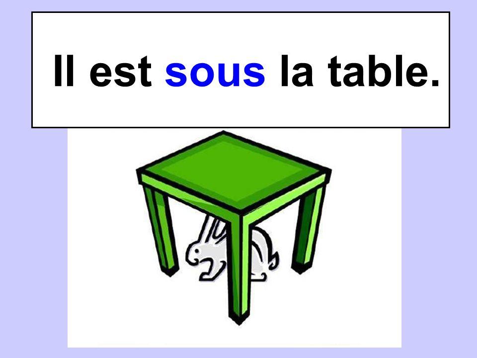 Il est sous la table.