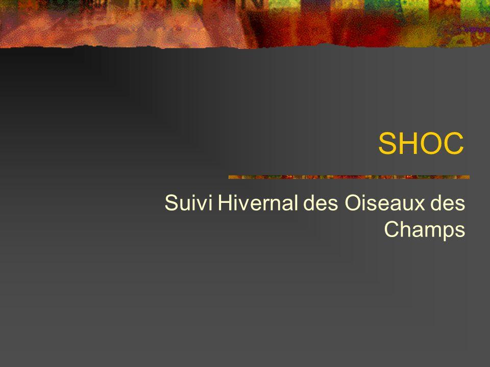 SHOC Suivi Hivernal des Oiseaux des Champs