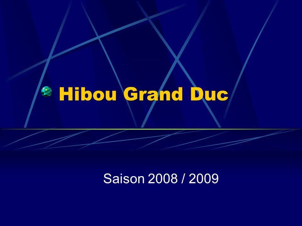 Hibou Grand Duc Saison 2008 / 2009