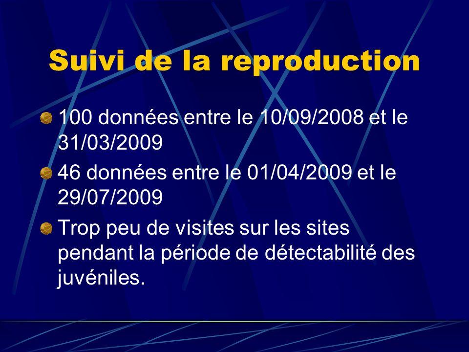 Suivi de la reproduction 100 données entre le 10/09/2008 et le 31/03/2009 46 données entre le 01/04/2009 et le 29/07/2009 Trop peu de visites sur les sites pendant la période de détectabilité des juvéniles.