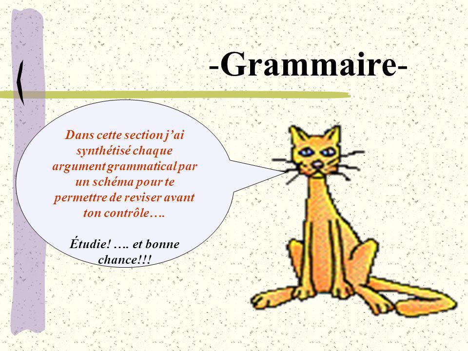 Dans cette section jai synthétisé chaque argument grammatical par un schéma pour te permettre de reviser avant ton contrôle…. Étudie! …. et bonne chan