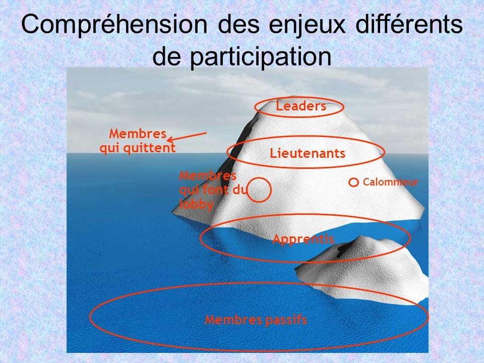 Membres passifs Leaders Apprentis Membres qui font du lobby Calomnieur Compréhension des enjeux différents de participation Lieutenants Membres qui qu