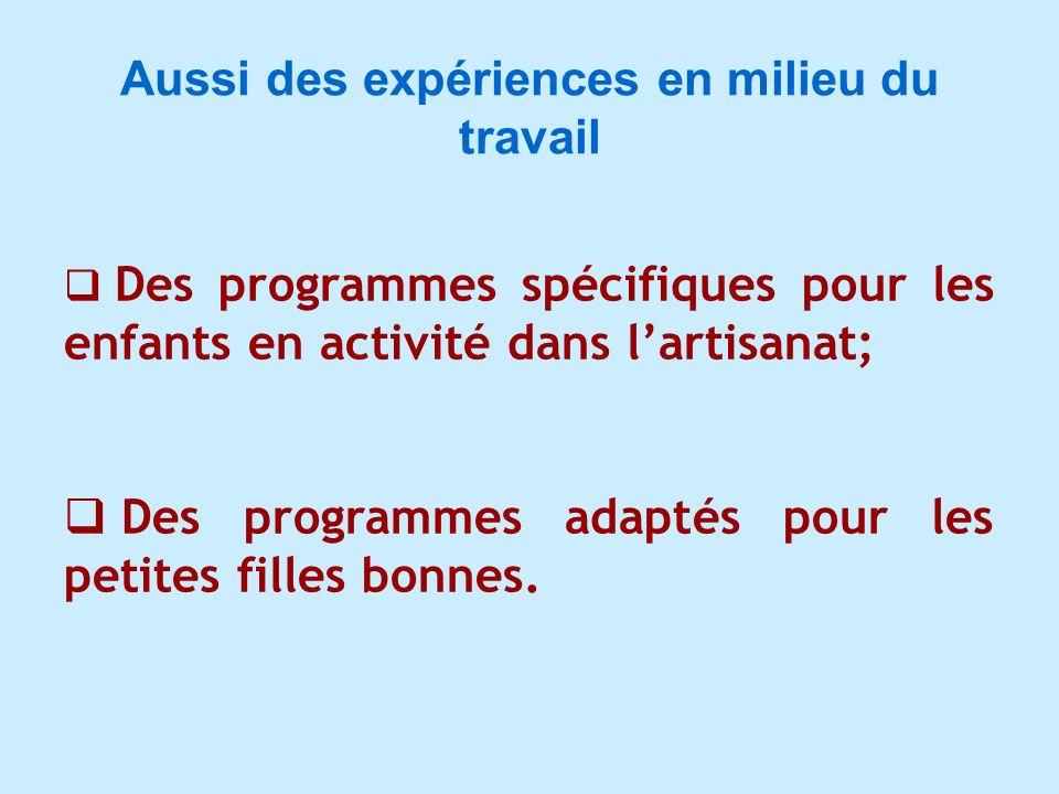 Aussi des expériences en milieu du travail Des programmes spécifiques pour les enfants en activité dans lartisanat; Des programmes adaptés pour les pe