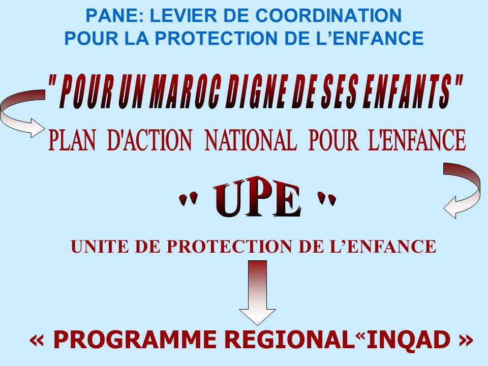 PANE: LEVIER DE COORDINATION POUR LA PROTECTION DE LENFANCE « PROGRAMME REGIONAL « INQAD » UNITE DE PROTECTION DE LENFANCE