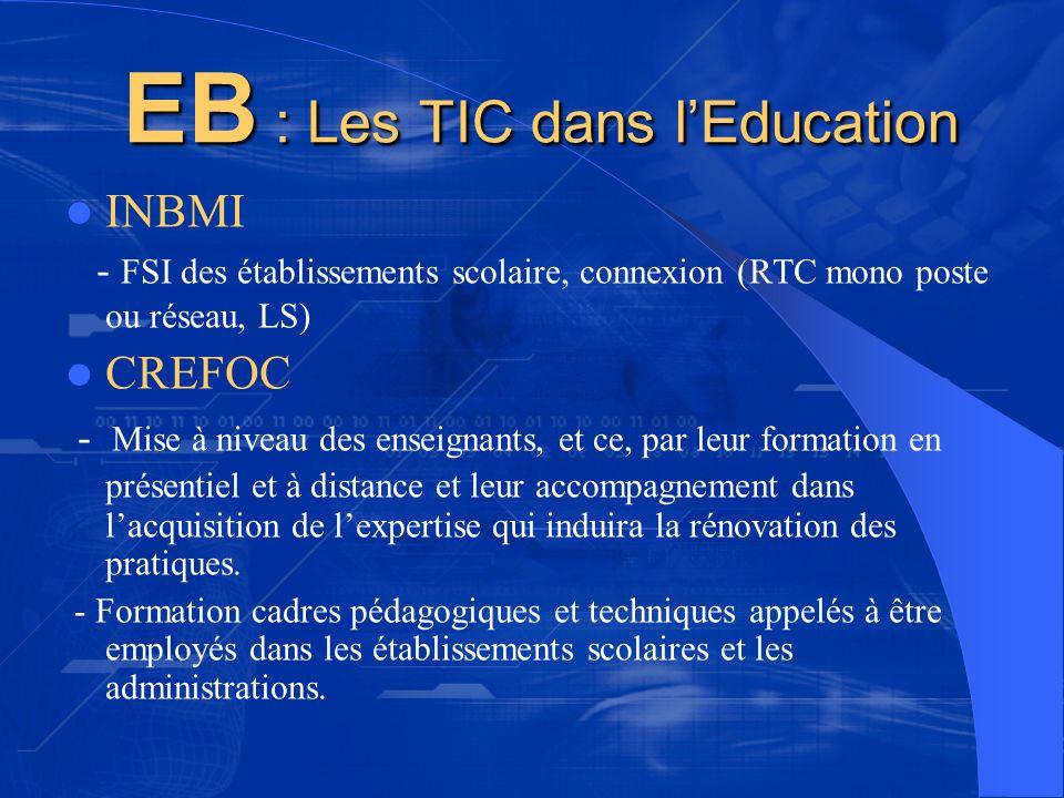 EB : Les TIC dans lEducation EB : Les TIC dans lEducation INBMI - FSI des établissements scolaire, connexion (RTC mono poste ou réseau, LS) CREFOC - M
