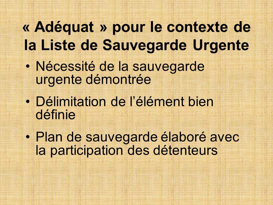 « Adéquat » pour le contexte de la Liste de Sauvegarde Urgente Nécessité de la sauvegarde urgente démontrée Délimitation de lélément bien définie Plan