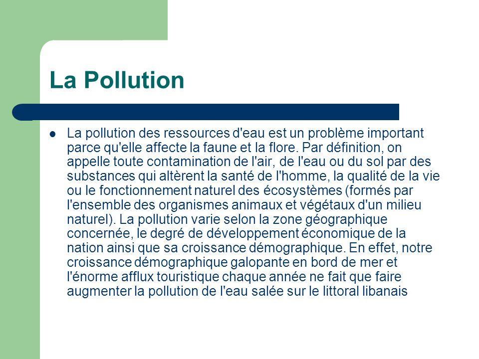 La Pollution La pollution des ressources d'eau est un problème important parce qu'elle affecte la faune et la flore. Par définition, on appelle toute