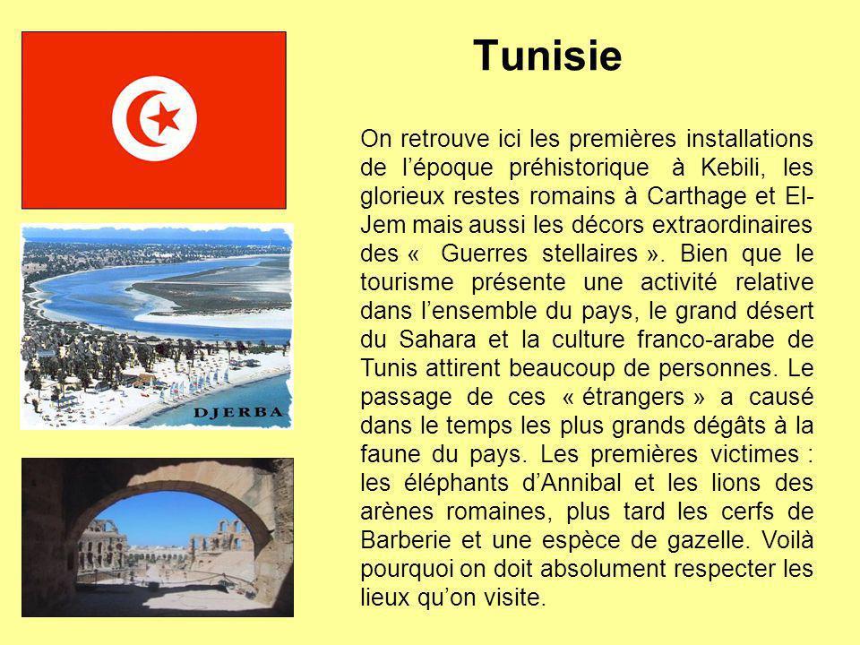 Tunisie On retrouve ici les premières installations de lépoque préhistorique à Kebili, les glorieux restes romains à Carthage et El- Jem mais aussi le