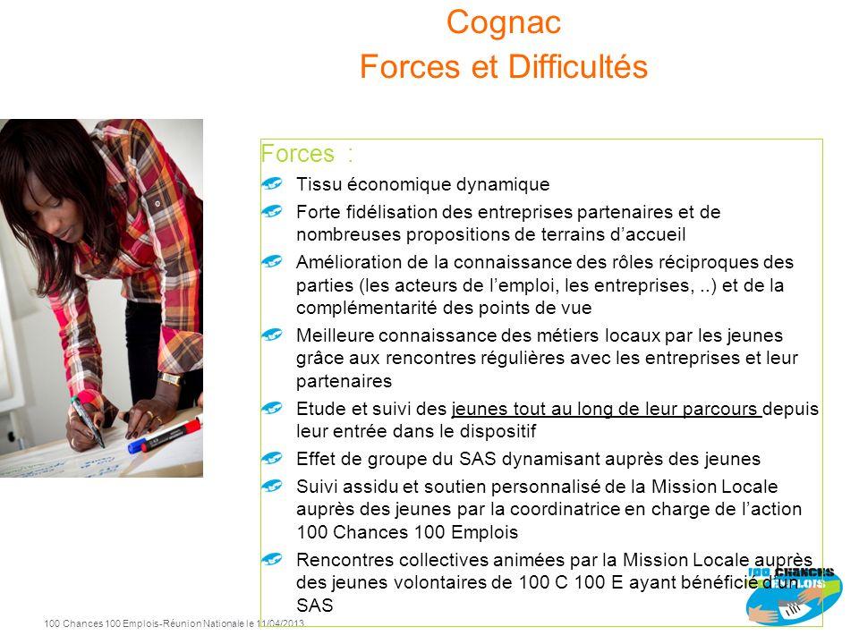 100 Chances 100 Emplois 24 -Réunion Nationale le 11/04/2013 Cognac Entrées Sorties positives 2012 29 11