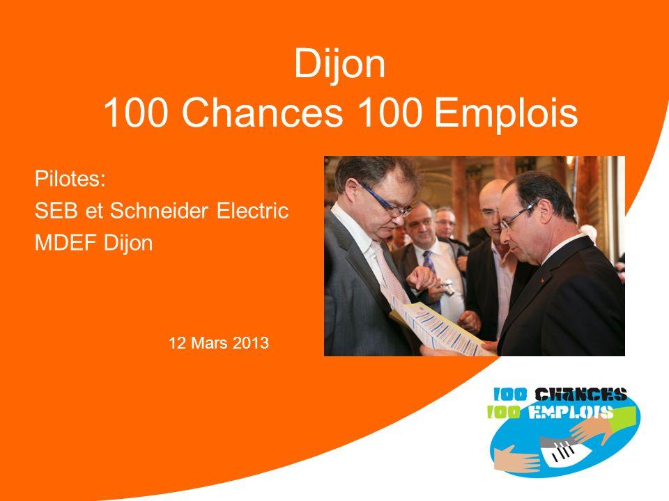 100 Chances 100 Emplois 30 -Réunion Nationale le 11/04/2013 Forces : Une communication importante sur le dispositif Envoi aux associations et entrepri