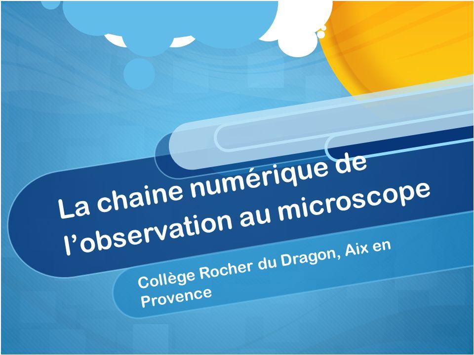 La chaine numérique de lobservation au microscope Collège Rocher du Dragon, Aix en Provence