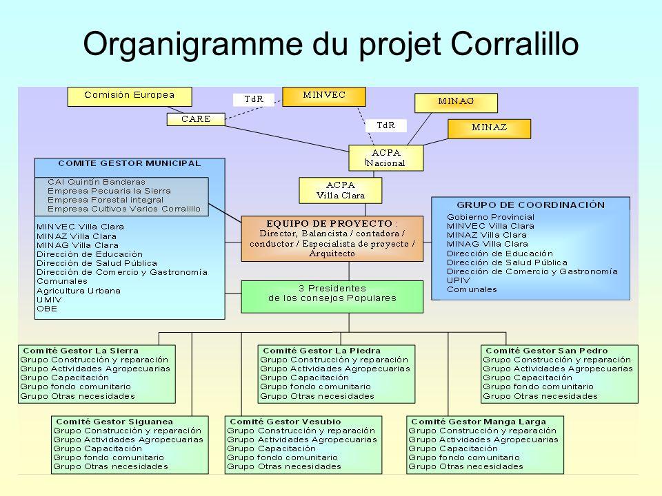 Organigramme du projet Corralillo