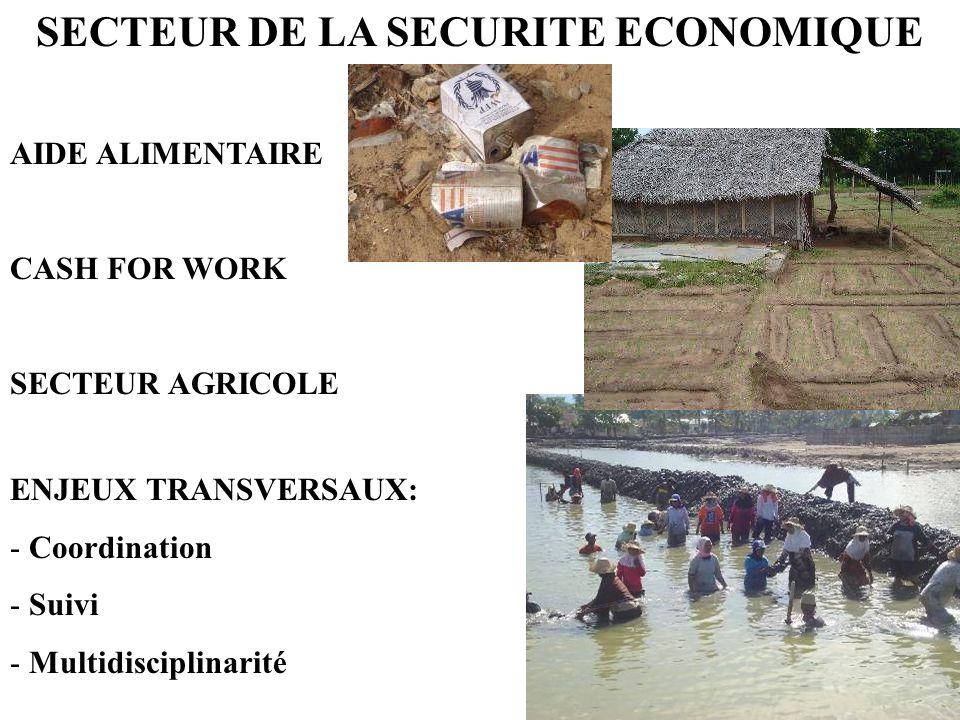 SECTEUR DE LA SECURITE ECONOMIQUE AIDE ALIMENTAIRE CASH FOR WORK SECTEUR AGRICOLE ENJEUX TRANSVERSAUX: - Coordination - Suivi - Multidisciplinarité