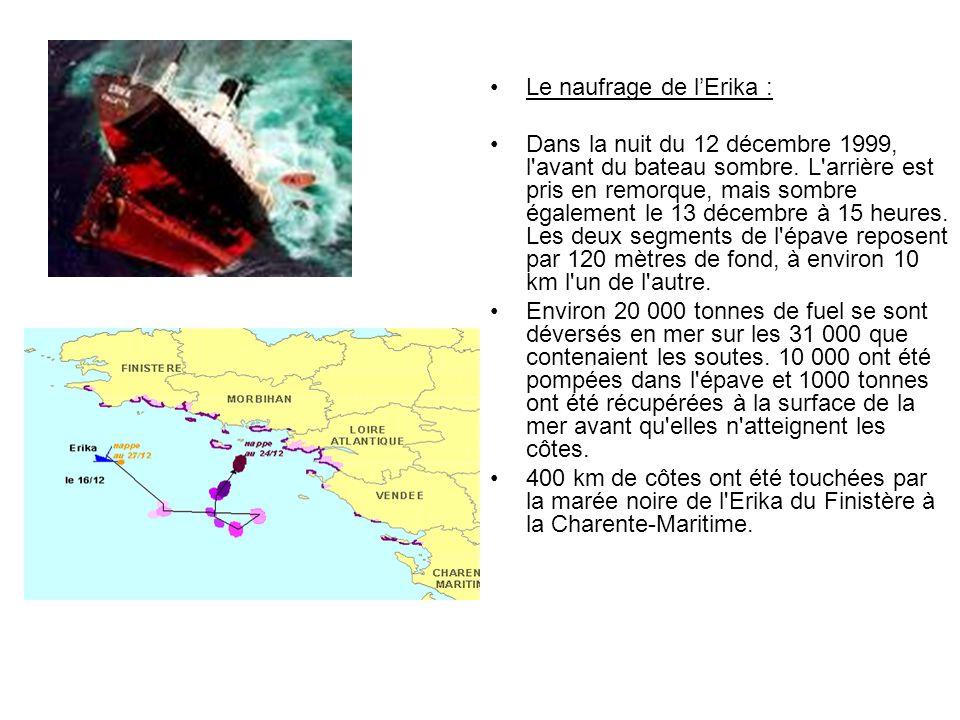 Le naufrage de lErika : Dans la nuit du 12 décembre 1999, l'avant du bateau sombre. L'arrière est pris en remorque, mais sombre également le 13 décemb