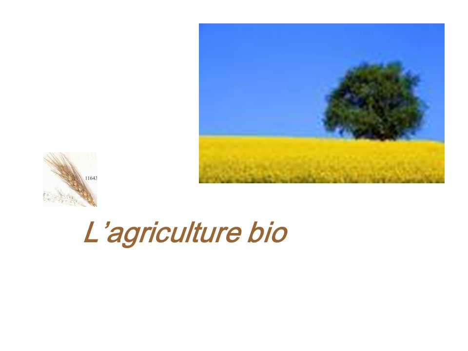 Lagriculture bio