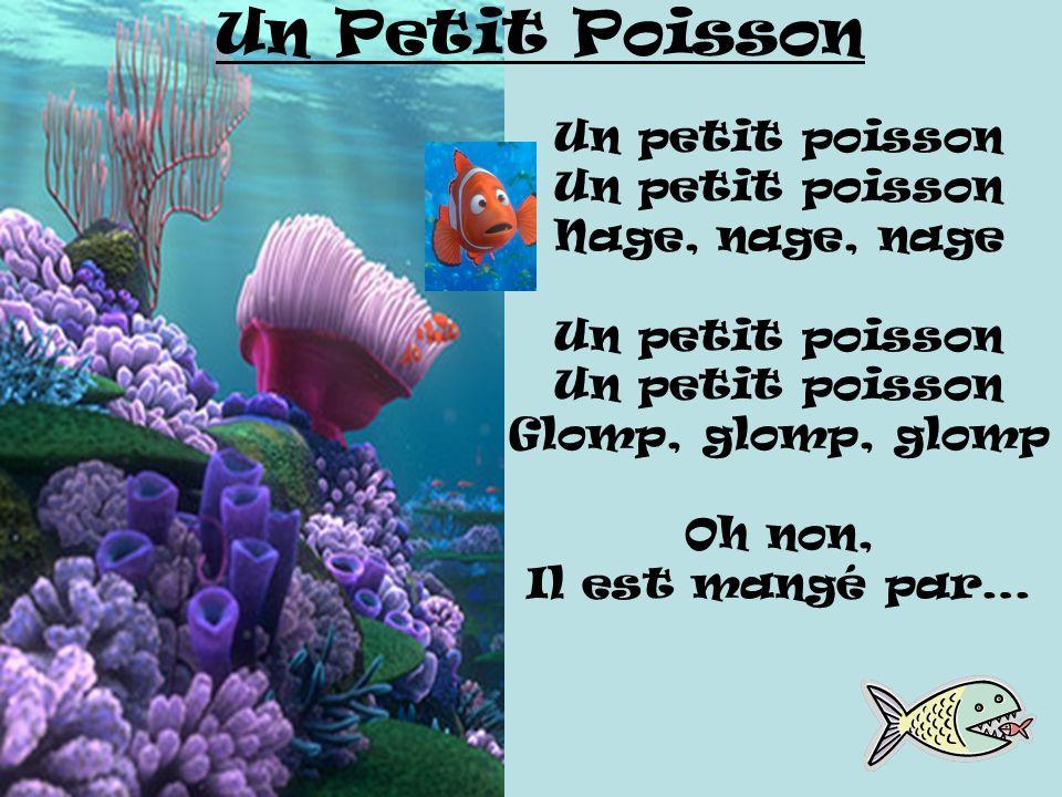 Un petit poisson Nage, nage, nage Un petit poisson Glomp, glomp, glomp Oh non, Il est mangé par… Un Petit Poisson