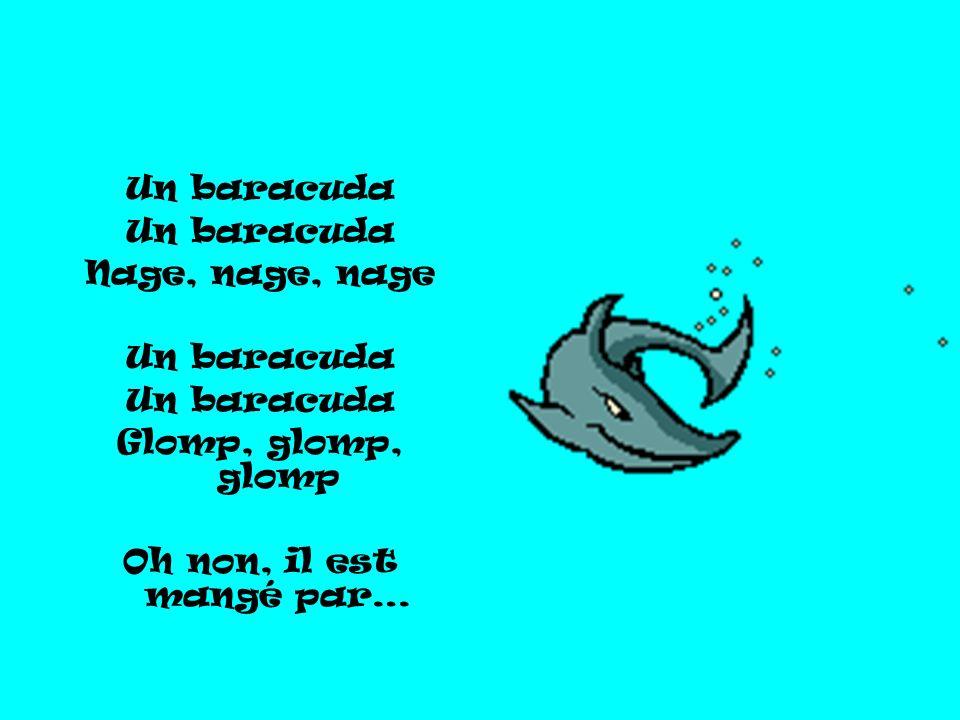 Un baracuda Nage, nage, nage Un baracuda Glomp, glomp, glomp Oh non, il est mangé par…