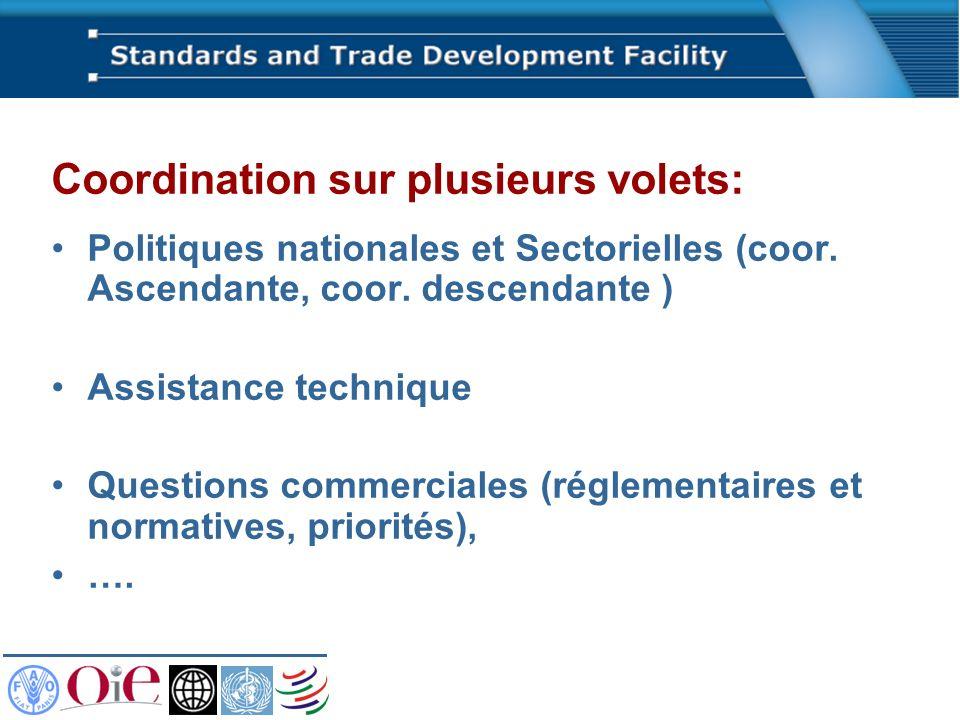 Coordination sur plusieurs volets: Politiques nationales et Sectorielles (coor. Ascendante, coor. descendante ) Assistance technique Questions commerc