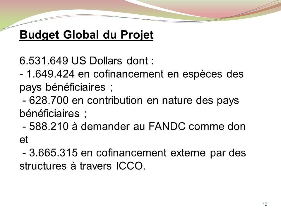 12 Budget Global du Projet 6.531.649 US Dollars dont : - 1.649.424 en cofinancement en espèces des pays bénéficiaires ; - 628.700 en contribution en nature des pays bénéficiaires ; - 588.210 à demander au FANDC comme don et - 3.665.315 en cofinancement externe par des structures à travers ICCO.