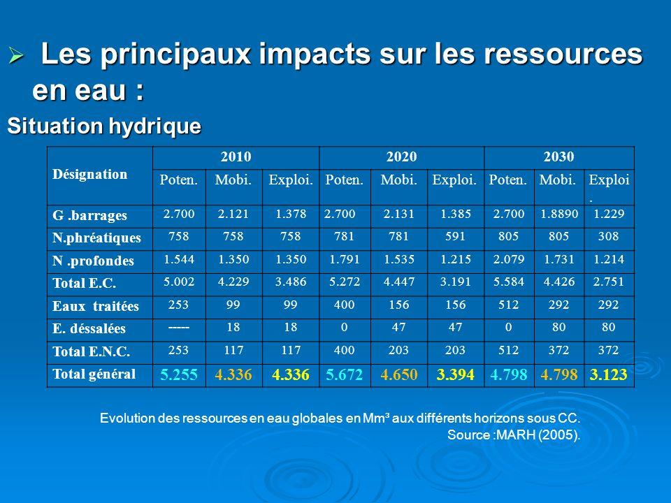 Les principaux impacts sur les ressources en eau : Les principaux impacts sur les ressources en eau : Situation hydrique Désignation 201020202030 Pote