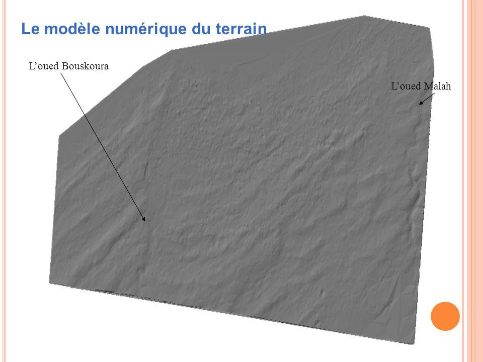 Loued Bouskoura Loued Malah Le modèle numérique du terrain