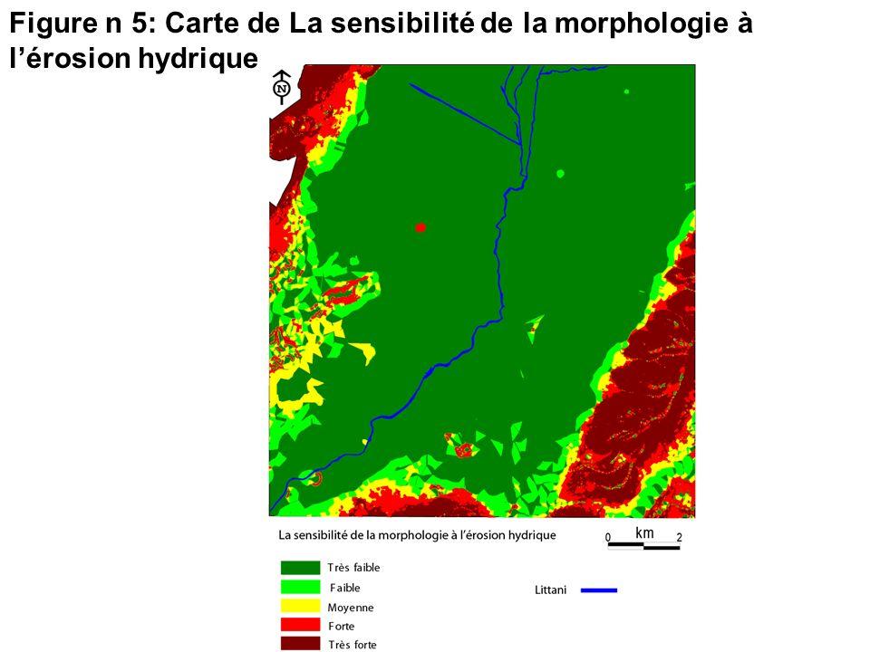 Figure n 5: Carte de La sensibilité de la morphologie à lérosion hydrique
