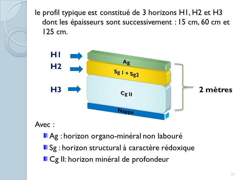 le profil typique est constitué de 3 horizons H1, H2 et H3 dont les épaisseurs sont successivement : 15 cm, 60 cm et 125 cm. H1 H2 H3 2 mètres Avec :