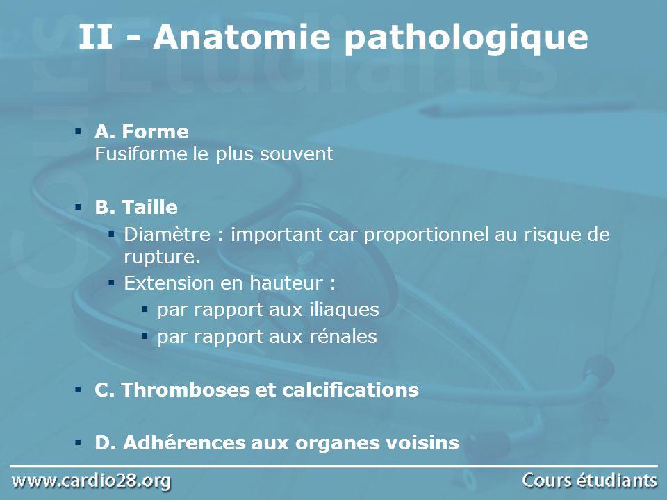 A. Forme Fusiforme le plus souvent B. Taille Diamètre : important car proportionnel au risque de rupture. Extension en hauteur : par rapport aux iliaq