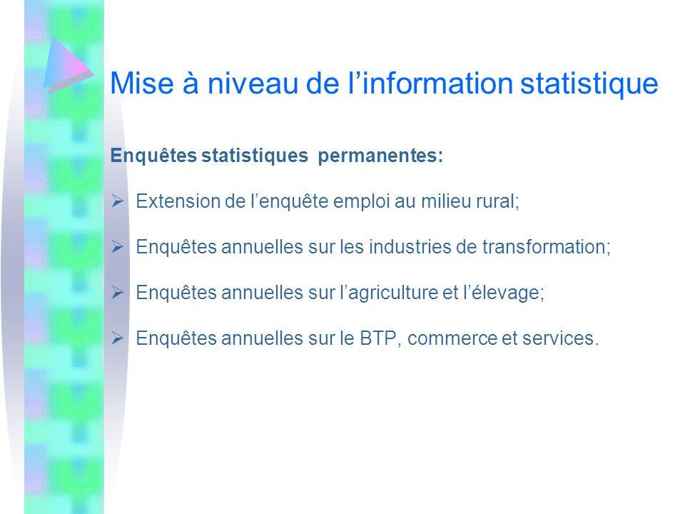 Mise à niveau de linformation statistique Enquêtes statistiques permanentes: Extension de lenquête emploi au milieu rural; Enquêtes annuelles sur les